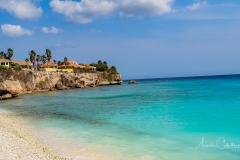 Curacao Reef Mari