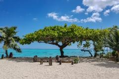 Moorea-Island-2