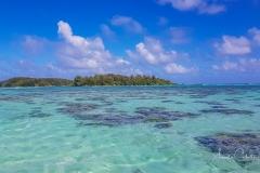 Moorea-Island-4