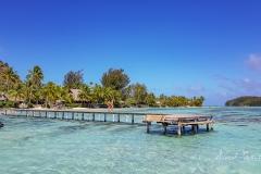 Moorea-Island-5