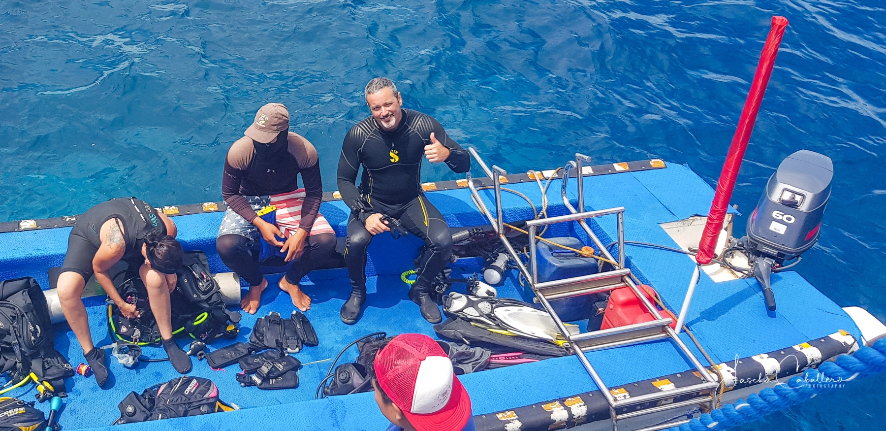 MV Dolphin